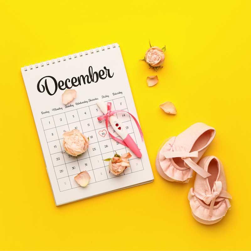 kalendar trudnoće termin porođaja