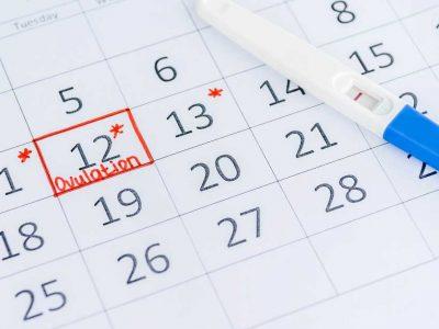 ovulacija
